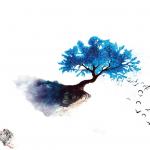 Aqualis: un nou brand cu o colectie de patru parfumuri