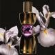 YSL Manifesto Le Parfum