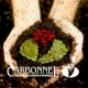 Carbonnel S.A. - Interviu cu parfumeuzele (Inventatoarele basmelor noastre parfumate)