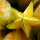 Fructul -stea (carambola)